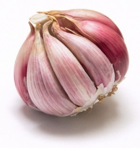 grow garlic for extra income