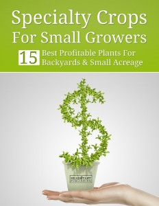 14 profitable plants for small growers