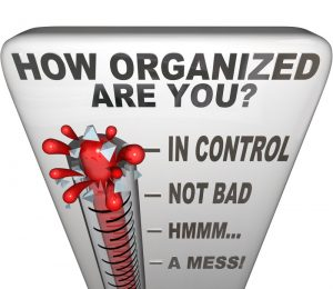 professional organizing business