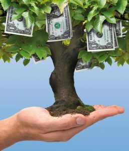 profitable trees